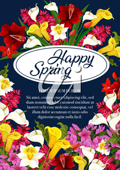 Happy Spring floral poster of daffodils, tulips or garden blooming flowers. Vector springtime greeting card design of spring flowers bunches of blooming lilac or orchid blossoms and callas