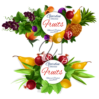 Fruit labels, tropical garden berry and green leaves. Pineapple, mango and lemon, grape, pear and plum, peach and pomegranate round frame, decorated with grapevine. Food and drink theme