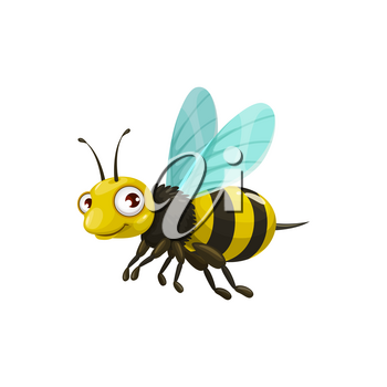 Cartoon bee vector icon, funny insect with striped body, cute face and big eyes. Kids club or apiary mascot, design element, wild flying creature isolated on white background