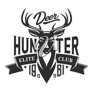 Deer hunt elite club badge, hunting open season icon and t-shirt print template. Vector deer antlers trophy, wild animal head with ribbon banner and hunter club stars