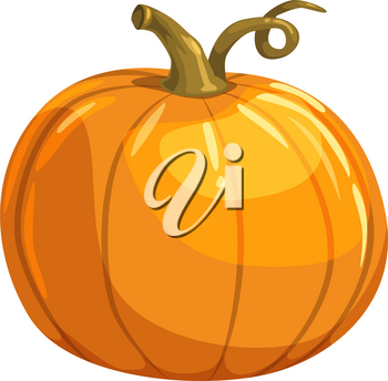 Pumpkin with curved stem isolated vegetarian food. Vector organic squash gourd, autumn vegetable