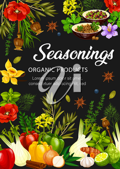 Food seasonings, spices, herbs and condiments. Vector rosemary, dill, pepper and cinnamon, garlic, anise and basil, oregano, thyme, cardamom and vanilla, onion and fennel, saffron and mustard