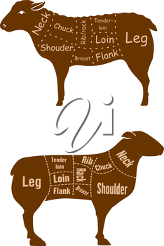 Lamb or mutton butcher cuts detailed diagramin retro style with brown silhouettes of sheeps with marked sections such as neck, shoulder, chuck, rib, rack, breast, tender loin, loin, flank and leg for