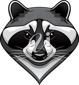 Cartoon wild raccoon animal mascot for sport team or wildlife themes isolated on white