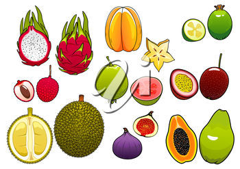 Freshly plucked bright yellow star fruit and pink litchi, soft and ripe passion fruit and feijoa, fig and papaya, juicy guava, dragon fruit and sweet durian fruits supplemented slices, showing seeds a