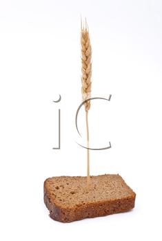 Slice bread with ear
