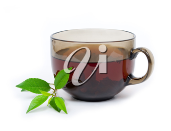 Royalty Free Photo of a Cup of Tea and Mint Leaves on a White Background