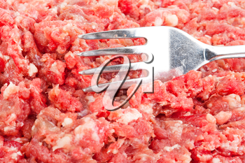 Fresh raw minced meat with fork