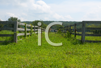 Royalty Free Photo of a Lane Between Fences