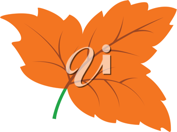 Royalty Free Clipart Image of a Leaf
