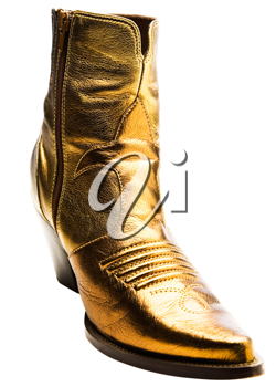 Royalty Free Photo of a Cowgirl Boot