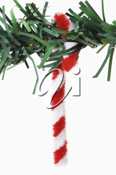 Close-up of a cane hanging on a Christmas tree