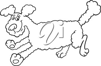 Black and White Cartoon Illustration of Cute Running Poodle Dog for Coloring Book or Coloring Page