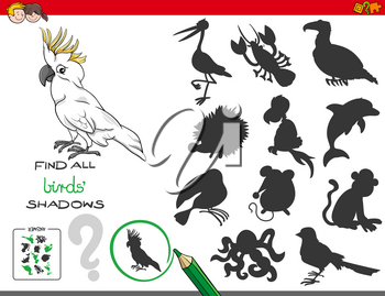 Cartoon Illustration of Finding All Birds Shadows Educational Activity for Children