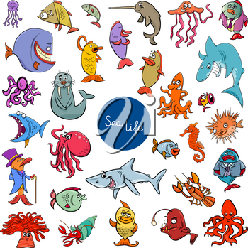 Cartoon Illustration of Sea Life Animal Characters Large Set