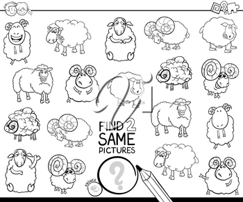 Black and White Cartoon Illustration of Finding Two Same Pictures Educational Activity Game for Kids with Sheep and Rams Animal Characters Coloring Book