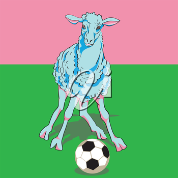 Hand drawn illustration of a sheep playing football on green grass
