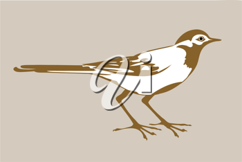 Royalty Free Clipart Image of a Wagtail