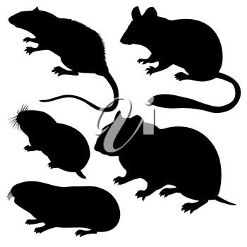 Royalty Free Clipart Image of Rodents