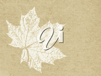 Royalty Free Clipart Image of a Maple Leaf