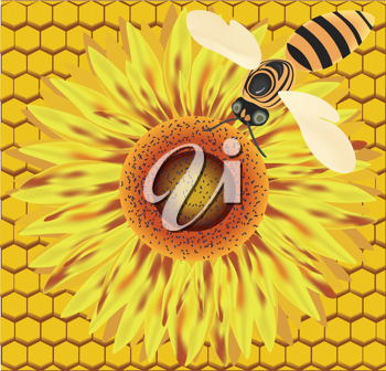 Royalty Free Clipart Image of a Bee and Flower on a Honeycomb Background