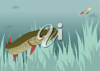 Royalty Free Clipart Image of a River Predator