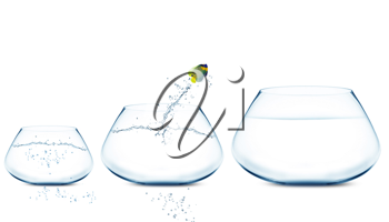 Royalty Free Photo of an Angelfish Jumping into Different Sized Fishbowls