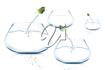 Royalty Free Photo of Angelfish Jumping From Fishbowl to Fishbowl