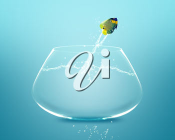 Royalty Free Photo of an Angelfish Jumping Out of a Fishbowl