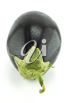 fresh eggplant vegetable with water drops on white background .