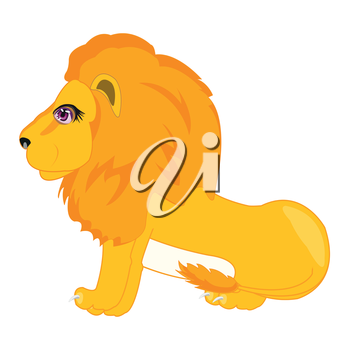 Animal lion on white background is insulated