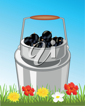 Can of the full berry of the currant on glade with flower
