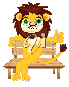 Animal lion sitting on bench on white background is insulated