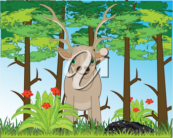 Wild ungulate animal deer in wood by summer