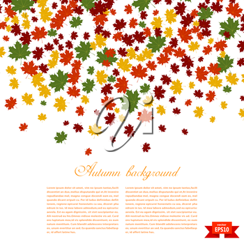 Autumn background. Illustration of falling red, yellow and green maple leaves. Image season. Maple leaves on a white background. Autumn weather. Stock vector illustration