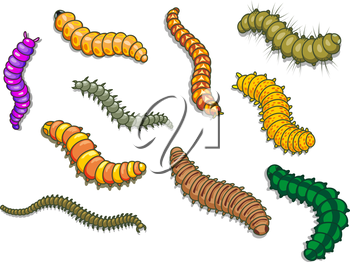 Cartoon worms and other insects. Vector illustration