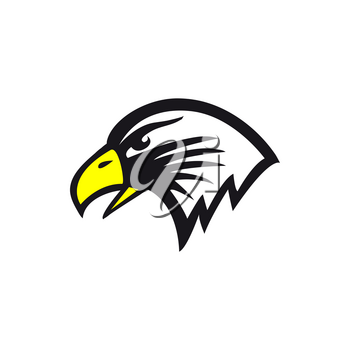 Eagle bird isolated bald falcon head profile hand drawn icon. Vector wild feathered animal icon, hawk or falcon, falconry sport. American coat of arms sign, endangered bird, freedom and power mascot
