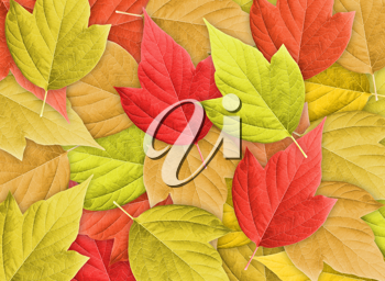 Abstract Colorful Nature Background with Group of Autumn Leafs.Close-up. Studio photography.