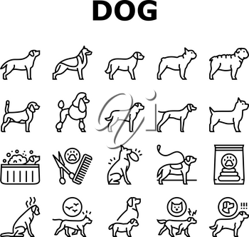 Dog Domestic Animal Collection Icons Set Vector. Yorkshire And Rottweiler, Beagle And French Bulldog, Golden Retriever And German Shepherd Dog Black Contour Illustrations