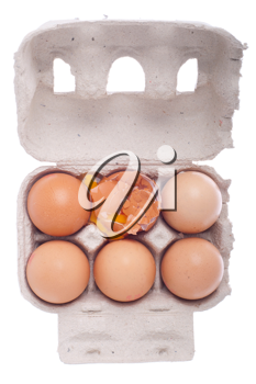 Royalty Free Photo of Eggs in a Carton