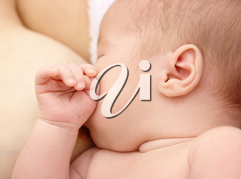 Royalty Free Photo of a Breastfeeding Infant