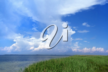 Royalty Free Clipart Image of Grass, Water and Sky