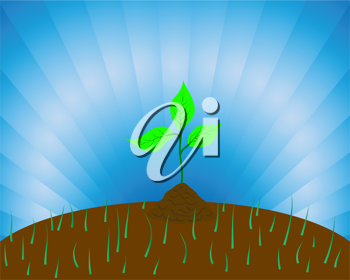 Royalty Free Clipart Image of a Sprout