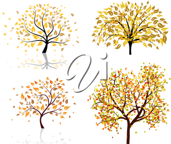 Set of four autumn tree. Vector illustration.