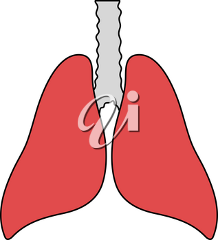 Human Lungs Icon. Editable Outline With Color Fill Design. Vector Illustration.
