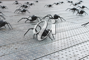 Spiders in the area of Rotterdam. Modern abstract art. Netherlands