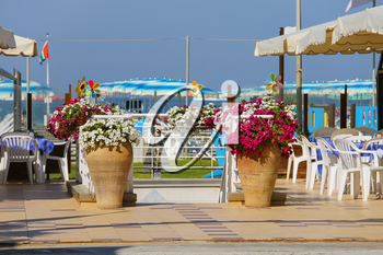 Decorative vases with flowers at the entrance to beach zone in Viareggio, Italy