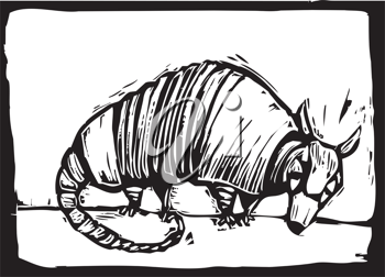 Royalty Free Clipart Image of a Small Armadillo
