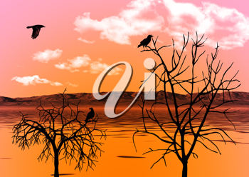 Royalty Free Photo of Ravens in an Evening Sky