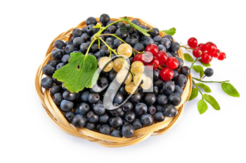 Royalty Free Photo of Berries in a Basket
